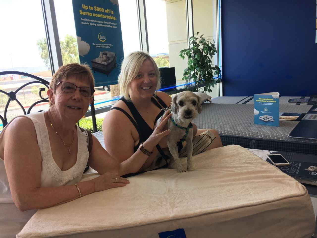 Rufus was adopted and given a free pet bed from Beat Mattress in Las Vegas.