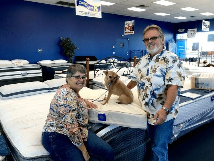Andi the Terrier adopted from The NSPCA and was given a free pet bed from Best mattress