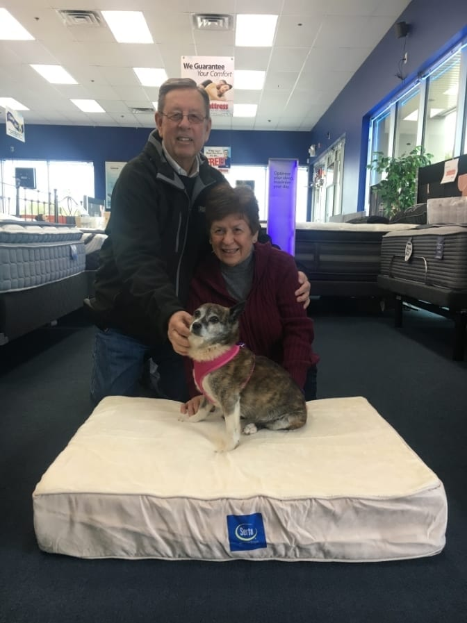 Mellow Molly Adopted from the NSPCA and given a serta ped bed from Best Mattress