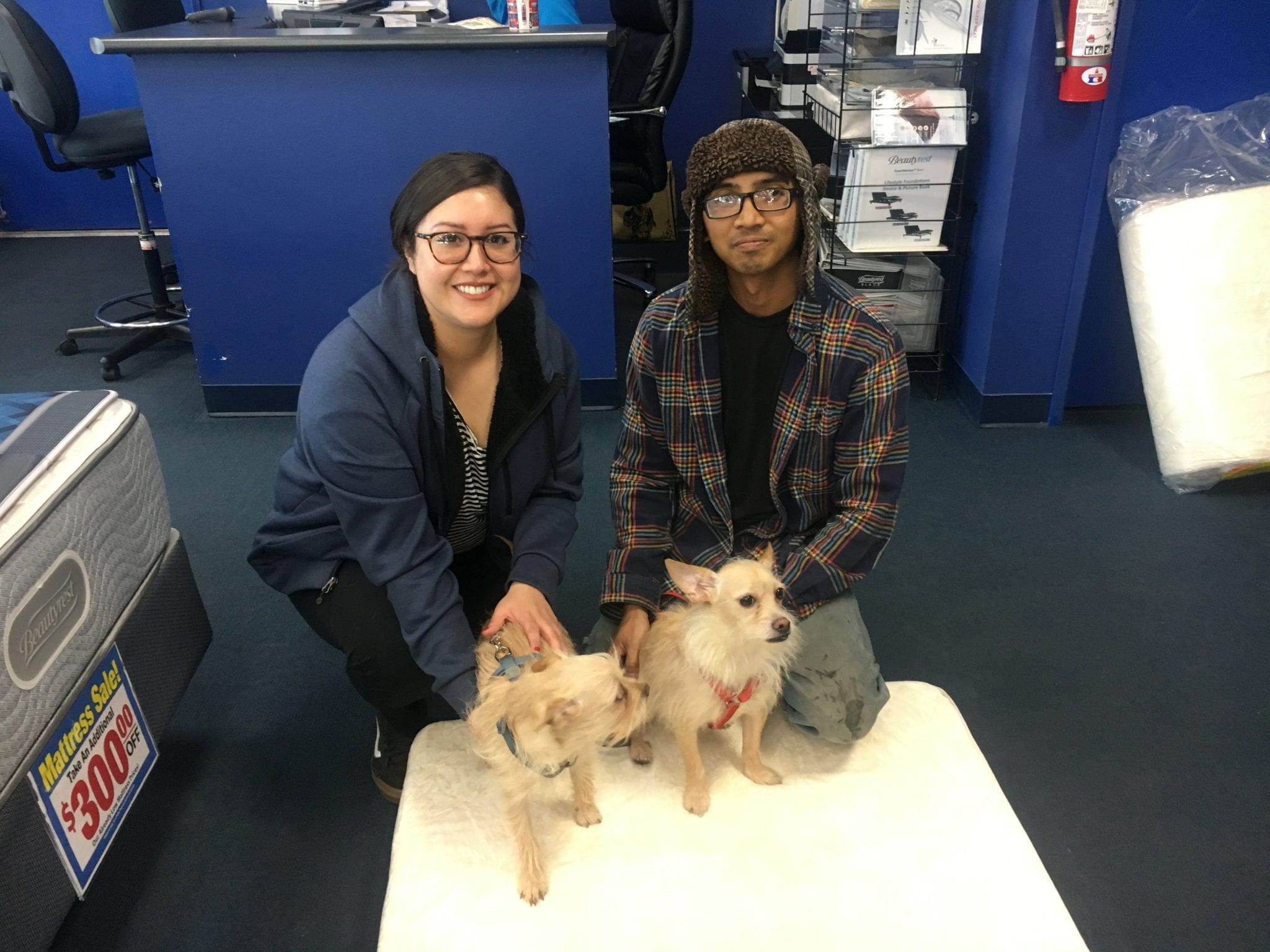 Two dogs that were adopted from NSPCA and were given free pet beds from Best Mattress in Las Vegas