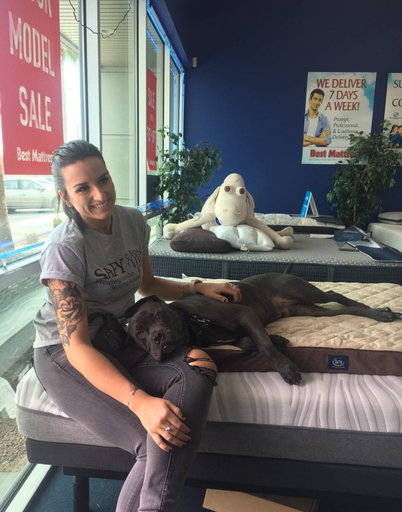 pet bed donated to a family who adopted a puppy from the NSPCA in Las Vegas