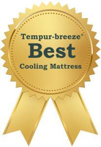 Best Cooling Mattress award