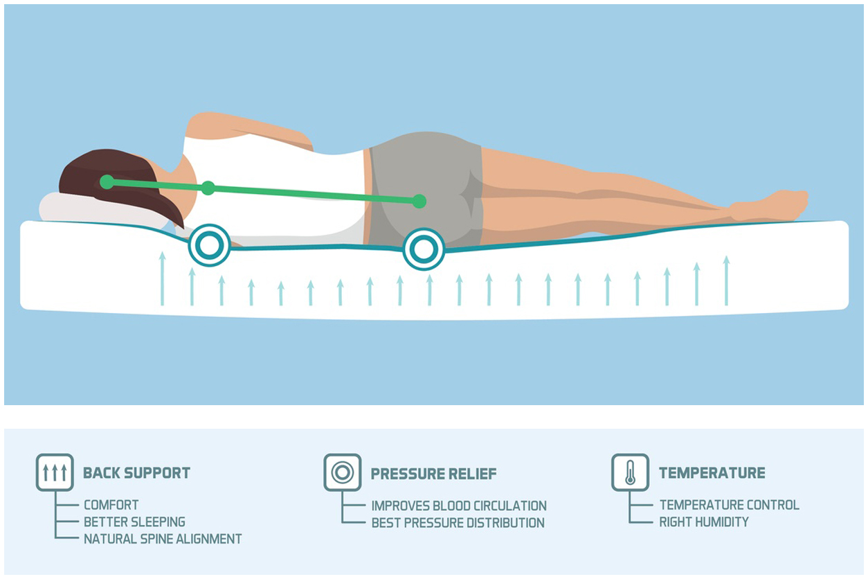 Infographic showing the proper sleeping ergonomics and body posture